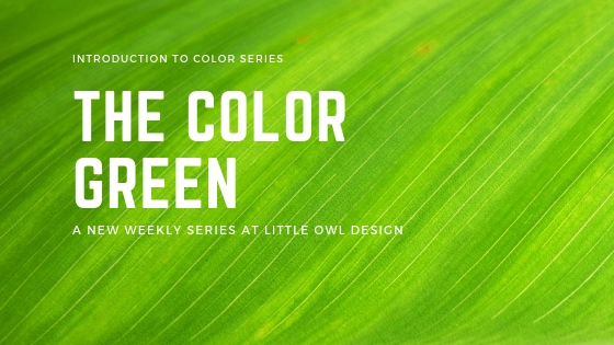 Little Owl Design The Color Green - Intro to Color Series