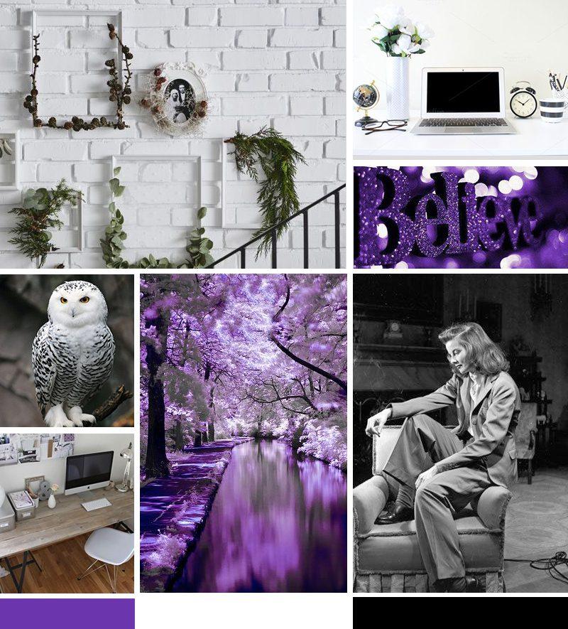Little Owl Design Mood board