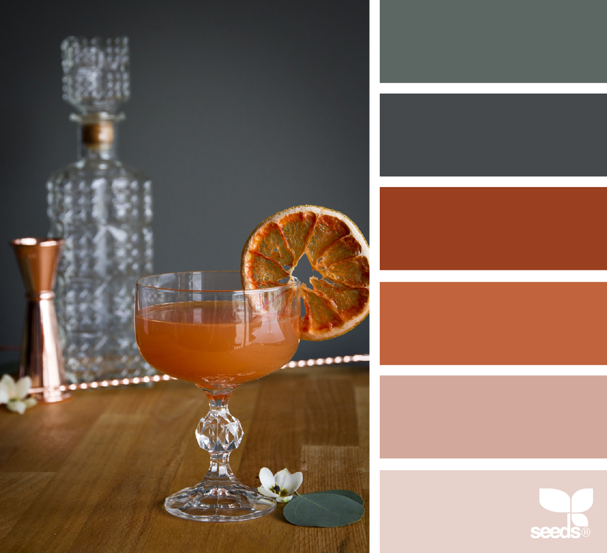 color inspiration board from photo of blood orange cocktail