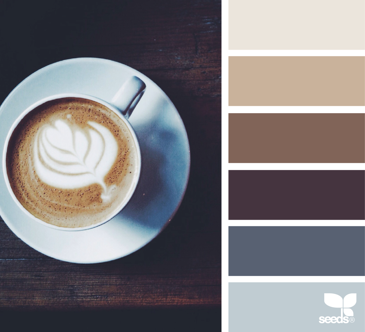 color inspiration board from photo of cup of coffee